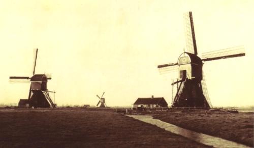 De 3 Cabauwse Molens 1934